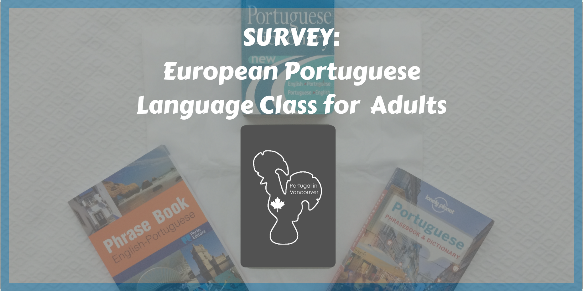 Survey European Portuguese Language Class for Adults